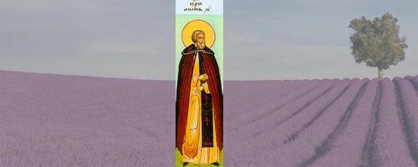 Преподобный Анин Халкидонский