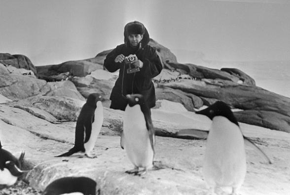 Василий Песков в Антарктиде
