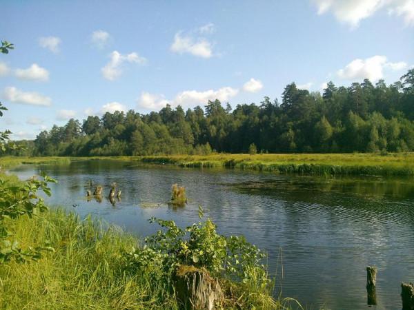 Колпь река 1