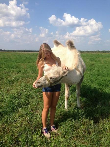 с верблюдом