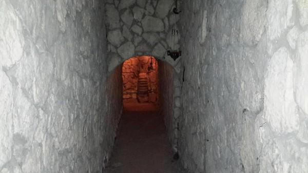 трикорфо фануария в катакомбах 1