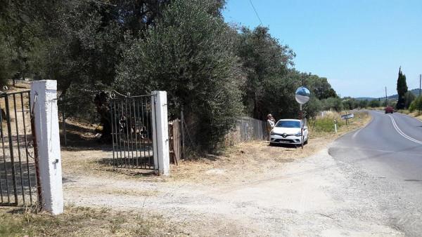 корфу Влахернской забор