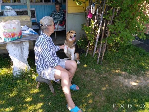 _дача папа с мамой