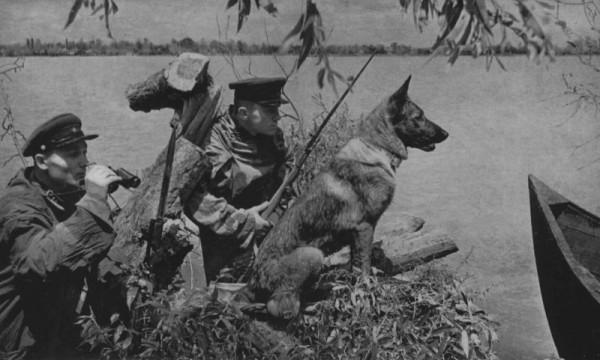 _Советские пограничники в дозоре. Эти две фотографии интересны тем, что они были сделаны для газеты на одной из застав на западной границе СССР 20 июня 1941 года, то есть за два дня до войны