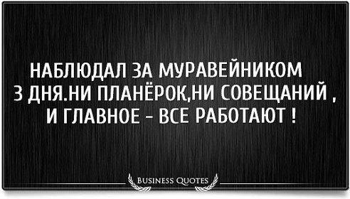 прикол_23