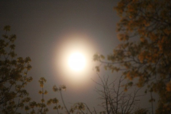 Лунный венец 07.05.15.