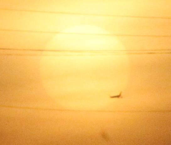Пролёт самолёта на фоне Солнца 01.03.2017.