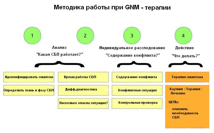 Методика работы при ГНМ терапии