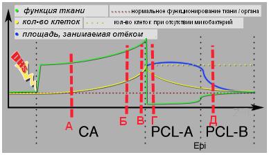 Липома 2