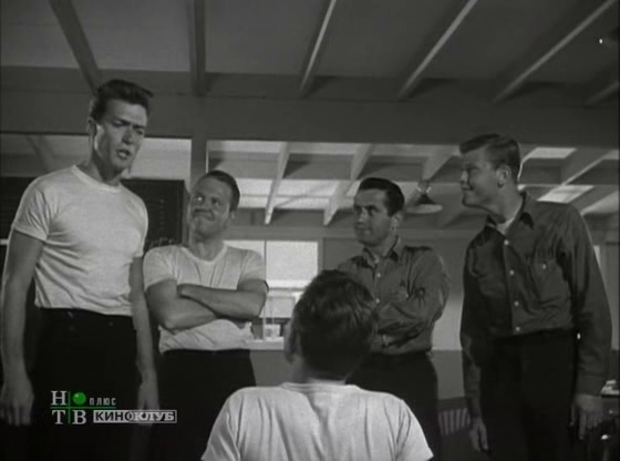 """Первая роль Клинта Иствуда (с указанием в титрах). Фильм Артура Любина """"Фрэнсис на флоте"""", 1955 год"""