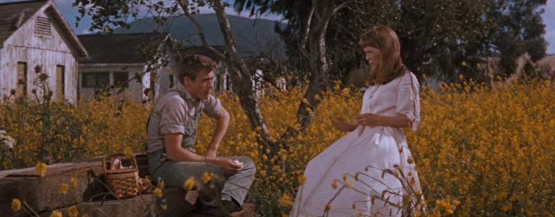 К востоку от рая. 1955 год. Рейтинг фильма 9,096. 136-е место в Золотой Тысяче.
