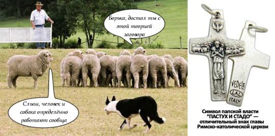Левая овца - это второй пришедший чувак. Та что стоит в стаде и вещает про теорию заговора - та мнущаяся барышня.