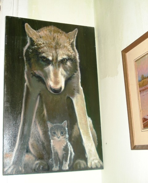 волк и котик