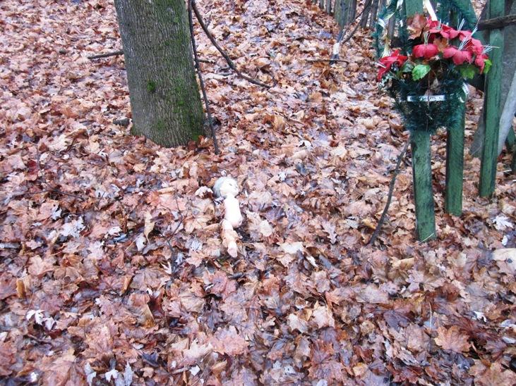 Кукла на листьях_6820