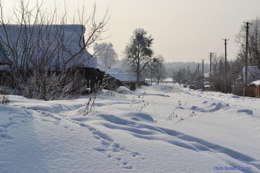 Зимний день-ж