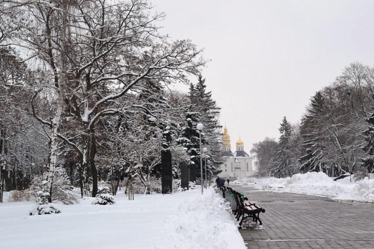 Снегопад_1331