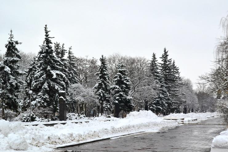 Снегопад_1333