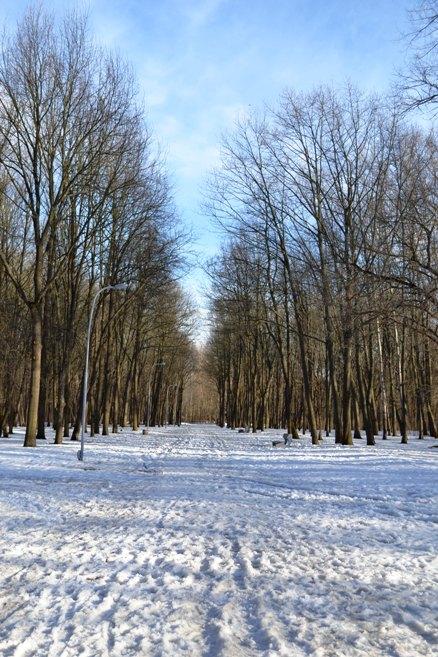 Парк_1330