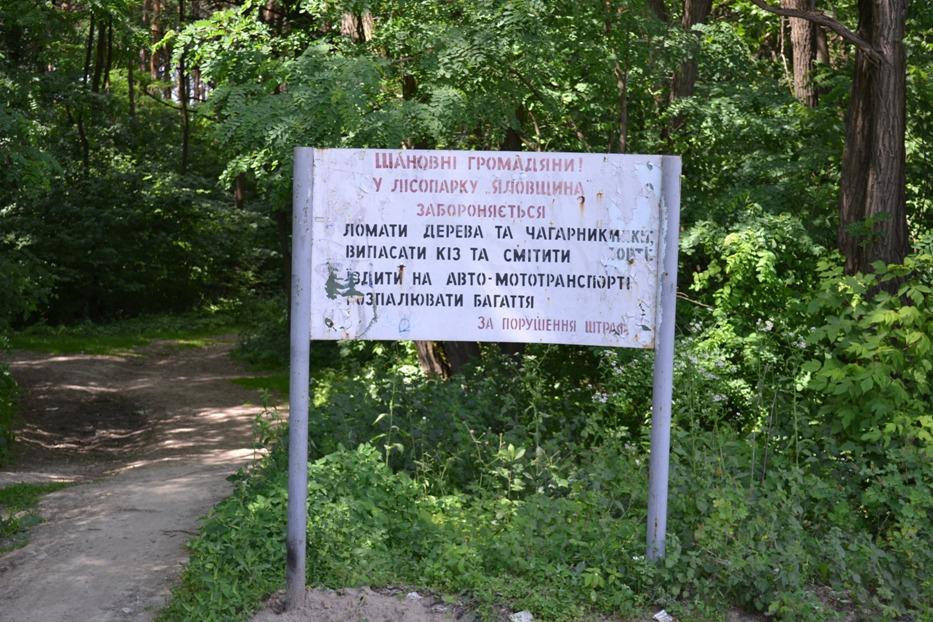 Яловщина_0259