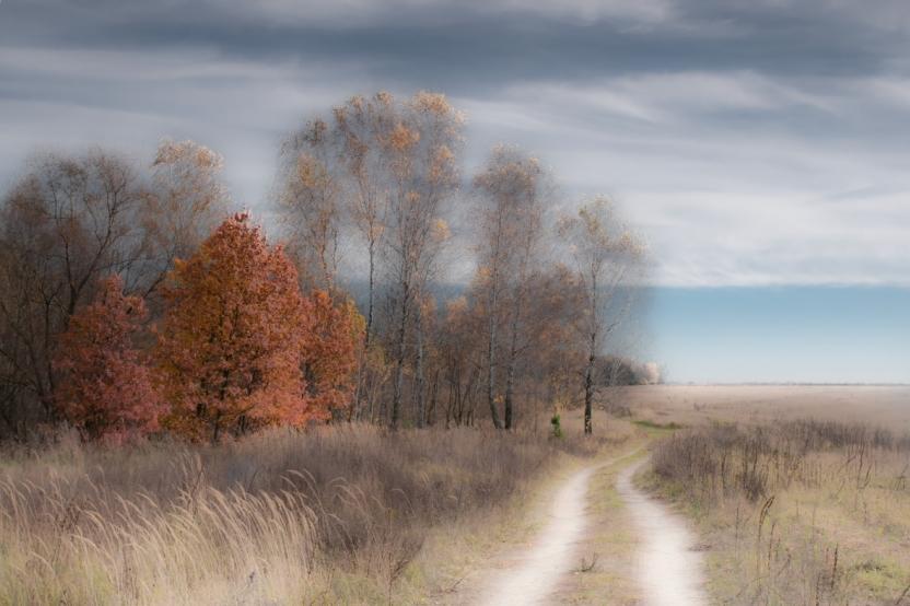 фото Николай Турчин-4