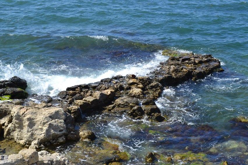 море в Хесонесе