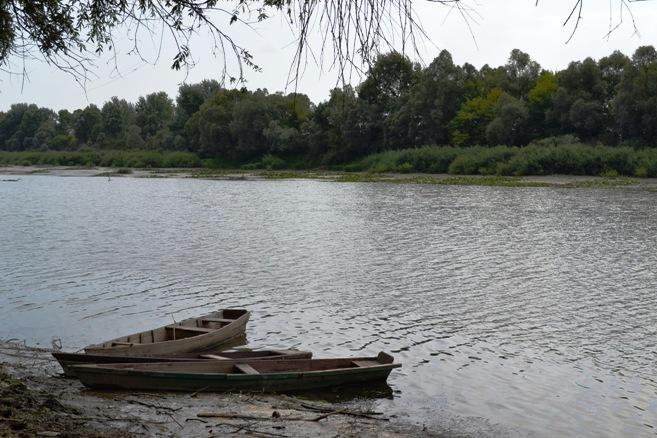 лодки_0118