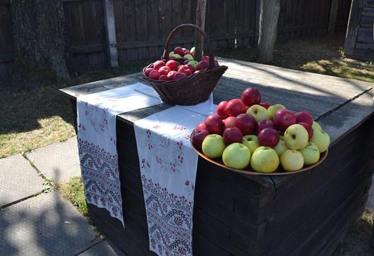 яблоки из сада Довженко_0615