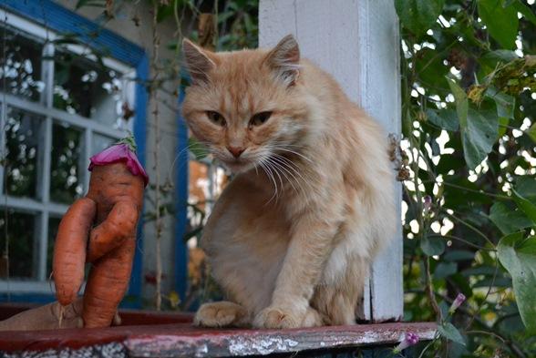 яша и морковка_0703