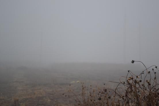туман_0434