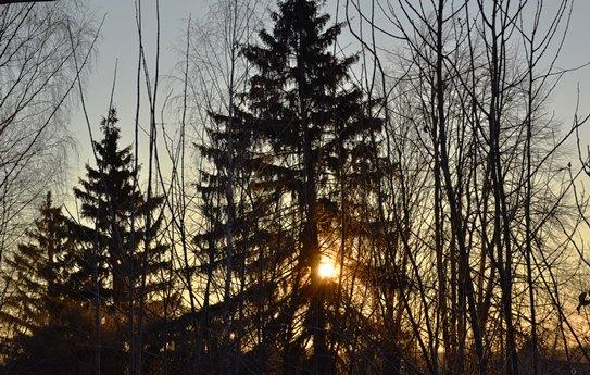 утро 31 декабря_0652