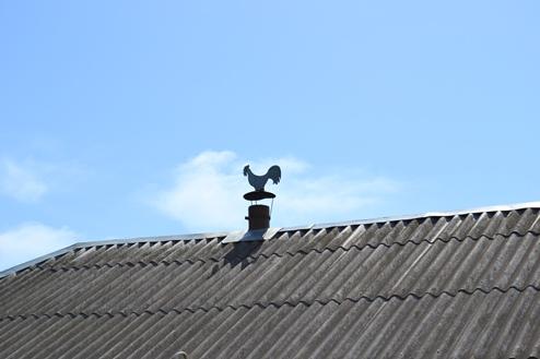 петушок на крыше_0192
