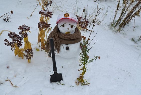 снеговик_0306