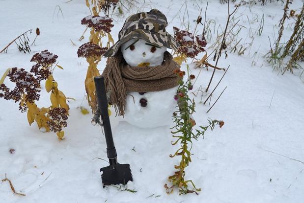 снеговик_0309