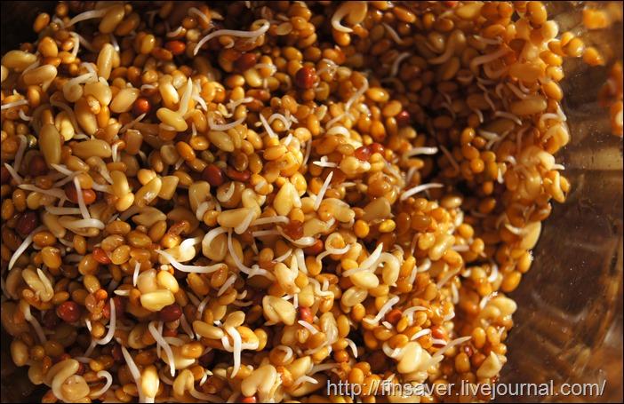 Now Foods, Real Food, Zesty Sprouting Mix, 16 oz (454 g отзыв фото iherb.com, шруки