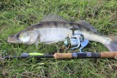 11740295-fishing-catch-on-the-grass-and-fishing-gear