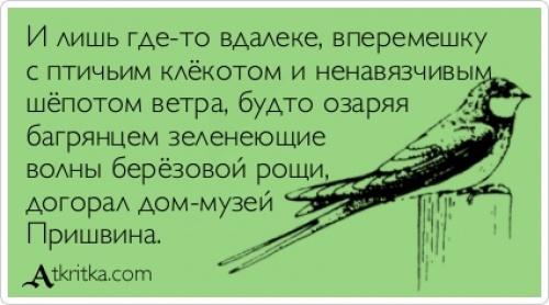 2752055-R3L8T8D-500-atkritka_1384301340_401