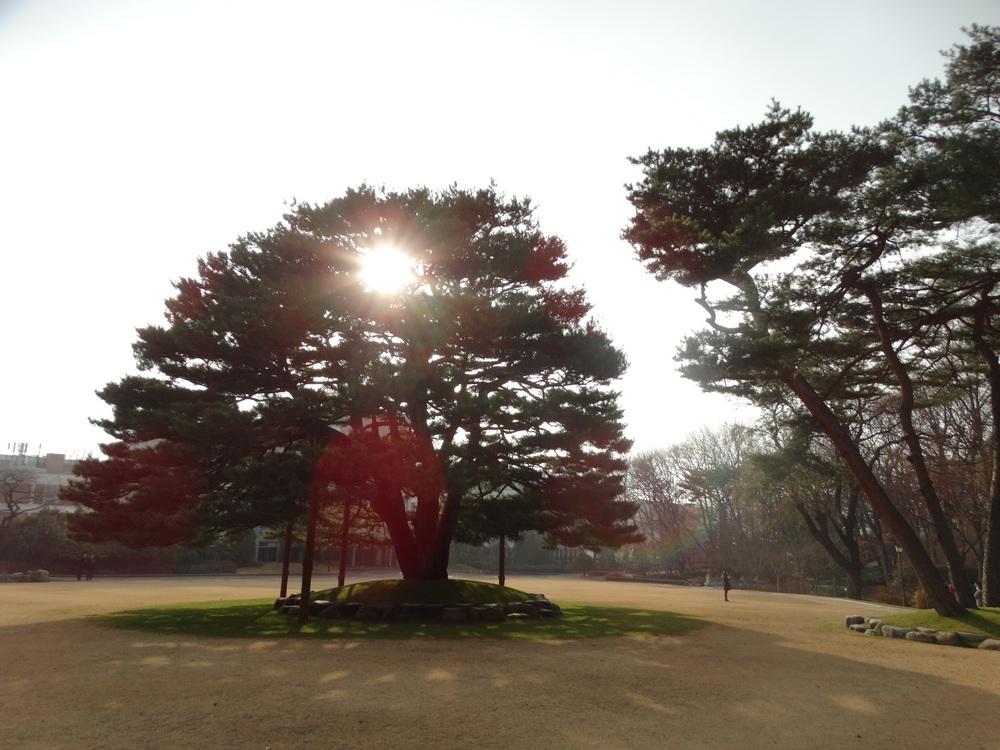 Korea (35).jpg
