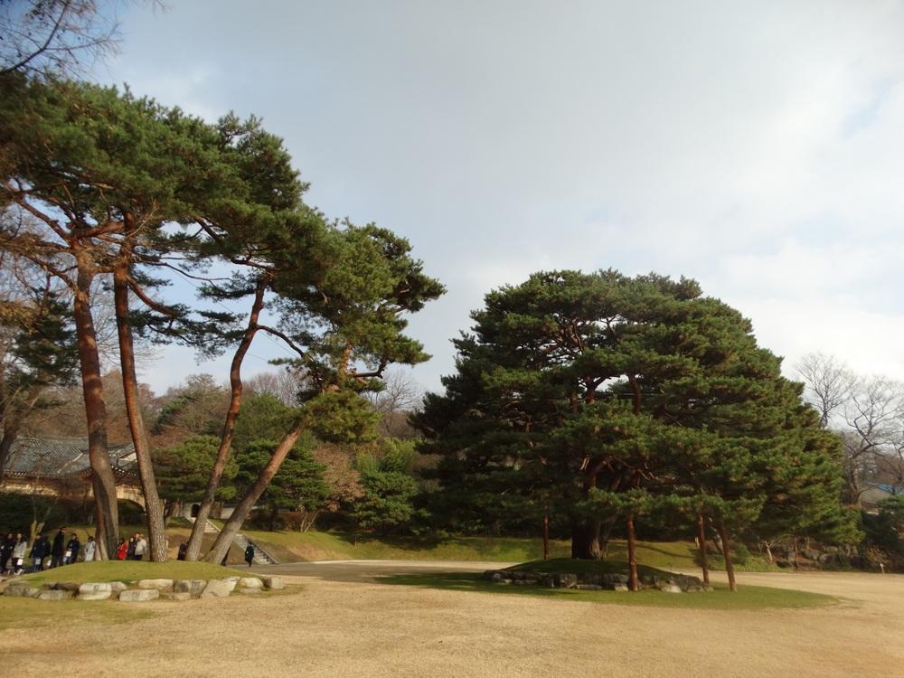 Korea (36).jpg