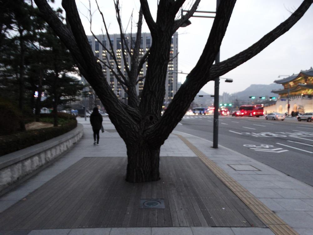 Korea (50).jpg