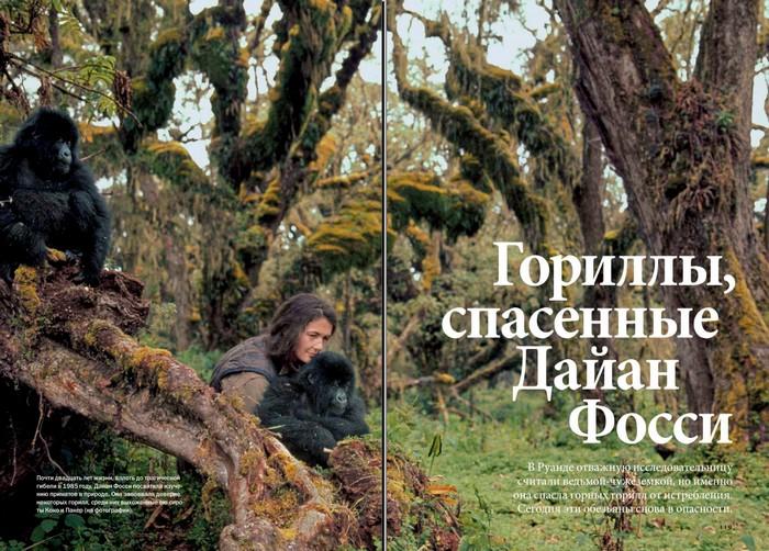 Dian_Fossey.jpg