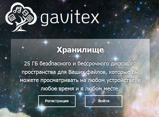 gavitex-1.jpg