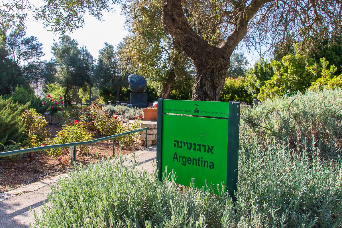 Jerusalem_rozy_073.jpg