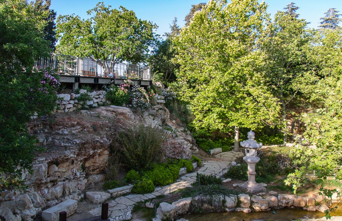 Jerusalem_rozy_082.jpg