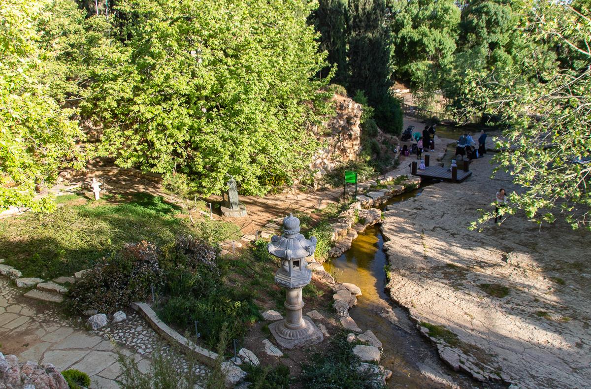 Jerusalem_rozy_083.jpg