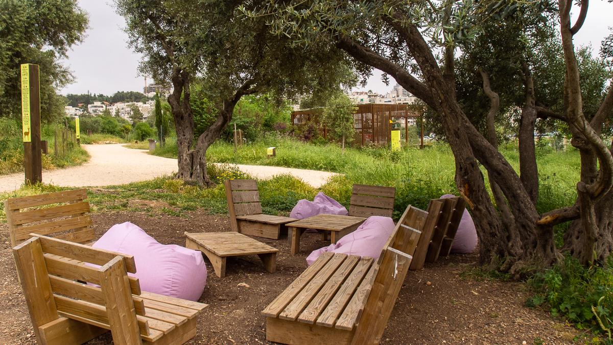Олений парк в сердце Иерусалима Cervo_park_003.jpg