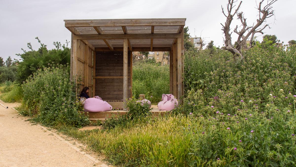 Олений парк в сердце Иерусалима Cervo_park_004.jpg