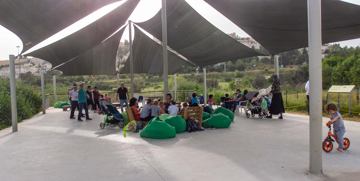 Олений парк в сердце Иерусалима Cervo_park_006.jpg