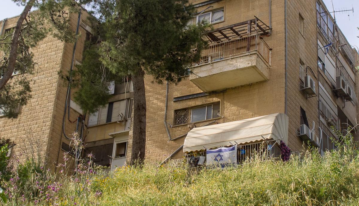 Олений парк в сердце Иерусалима Cervo_park_009.jpg
