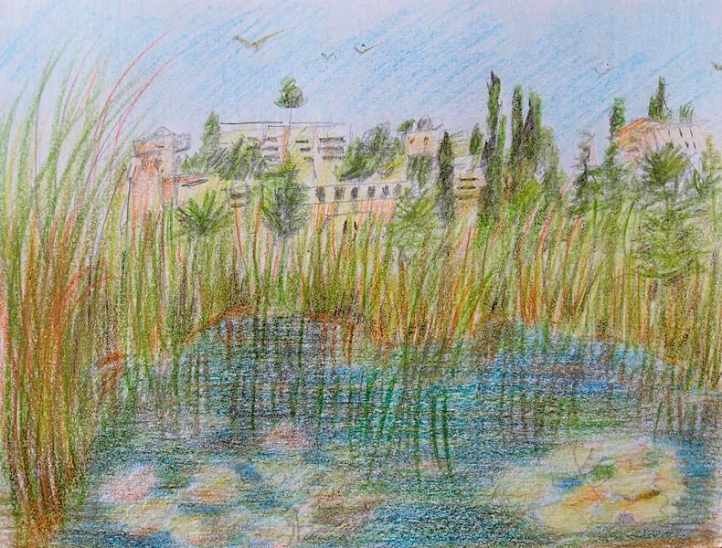Олений парк в сердце Иерусалима Cervo_park_014.jpg