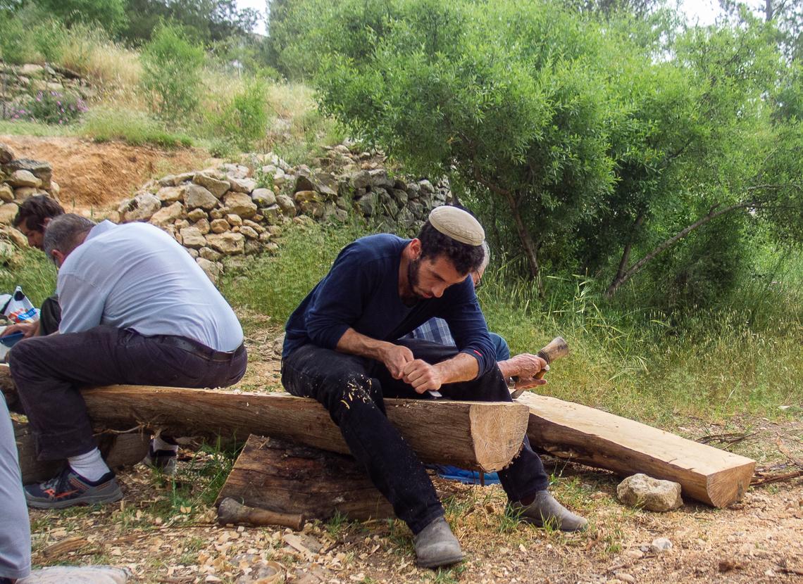 Олений парк в сердце Иерусалима Cervo_park_054.jpg